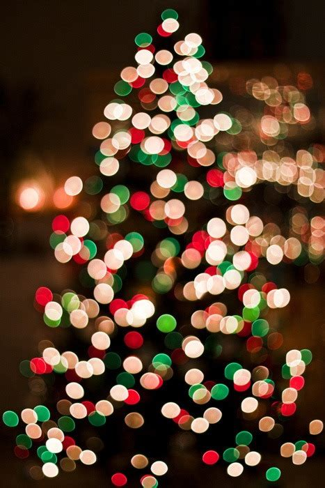 pictures of christmas trees with vertical lights merry lights tree upload blur vertical xmastree nevuh