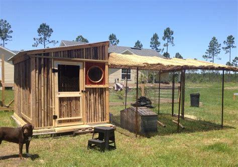 bamboo chicken house florida backyard chickens