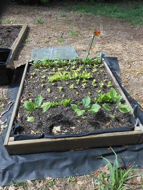 Garden Soil On Sale by Ask A Question Forum Price Of Raised Beds Garden Org