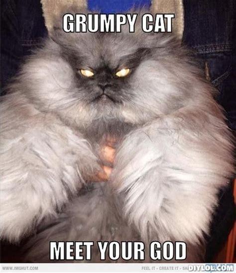 Angry Cat Meme Generator - grumpy cat meme grumpy cat meme generator grumpy cat