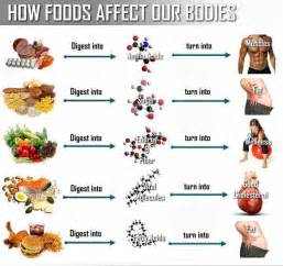 Healthy Snacks Before Bed How Foods Affect Your Body Recipes Table