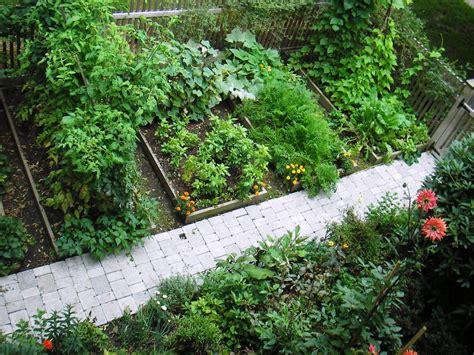 Garden Blogs by Skippy S Vegetable Garden September 2006
