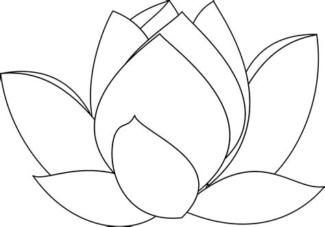 line drawing templates lotus flower line drawing cliparts co
