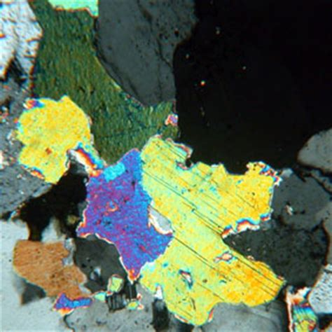 muscovite under thin section muscovite