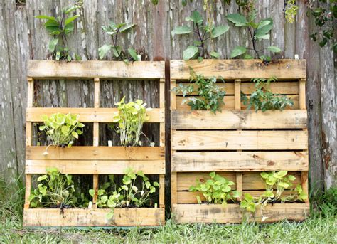 vertical garden pallets grow up how to design vertical gardens for tiny spaces