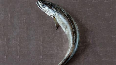 cuisiner le merlu cuisiner le merlu colin conseils de pr 233 paration et