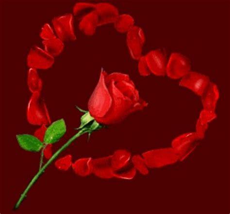 imagen de amor de una rosa con corazones rosados imagenes con rosas de amor imagenes de amor y amistad