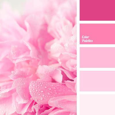 rosa color color color palette ideas