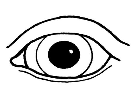 printable coloring pages eyes human body parts coloring