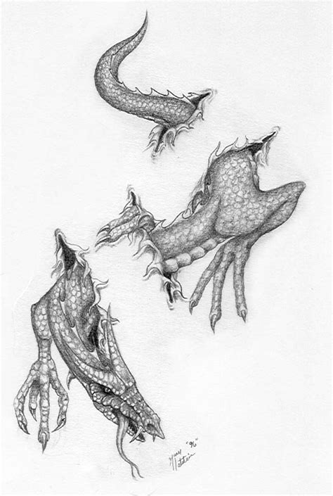 dragon calf tattoo designs index of drawings2 full size