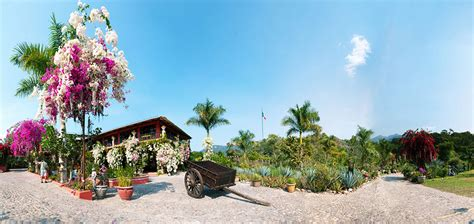 Vallarta Botanical Gardens by Things To Do On Vallarta S South Shore Villa Palmar Cancun Members