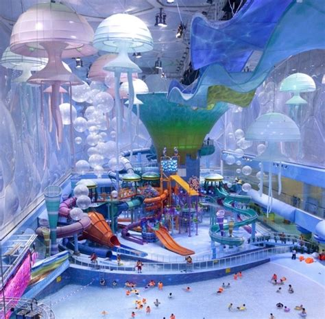 worlds best water parks pictures and meme s the best water
