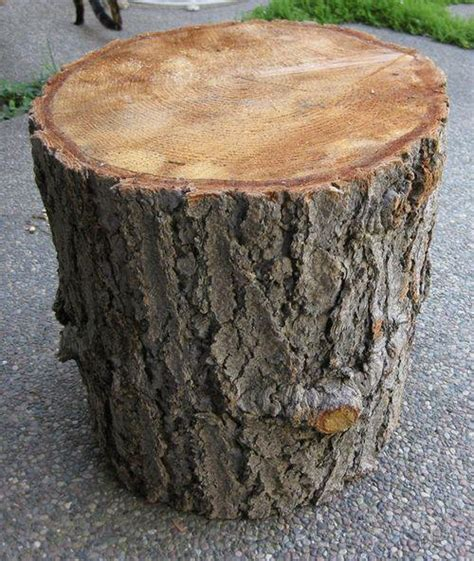 tree stump table for sale free looking for wood stumps gloucester ottawa