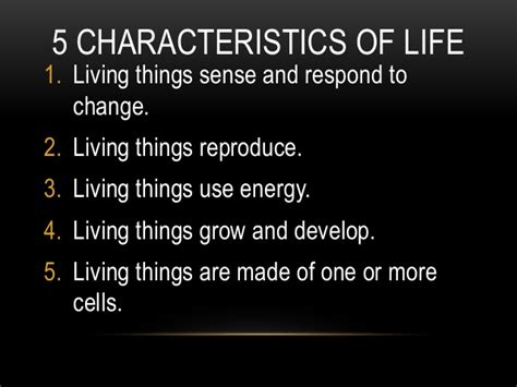 characteristics about biography characteristics of life candle activity