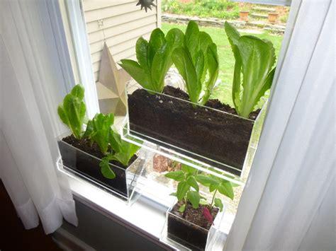 indoor window planter living ledge specialty vertical garden container traditional indoor pots and planters