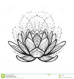 Stylized Lotus Flower Lotus Flower Intricate Stylized Linear Drawing Isolated