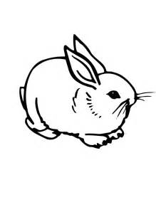 rabbit coloring pages free printable rabbit coloring pages for