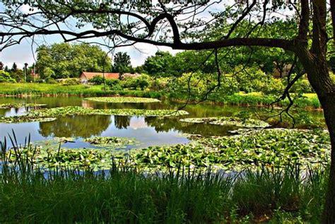The Botanic Garden And Botanical Museum Berlin Dahlem Largest Botanical Garden In World
