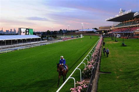 valley friday lights moonee valley quaddie tips