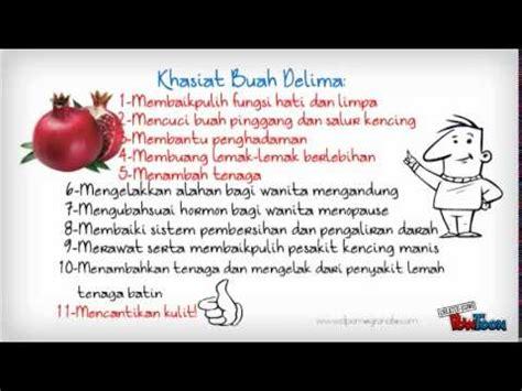 Smart Nutrition Atau Nutrision Madu Kesehatan Alami 18 Herbal Pilihan 12 manfaat khasiat buah naga bagi tubuh doovi