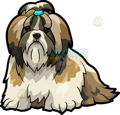 shih tzu as a pet clipart a shih tzu pet