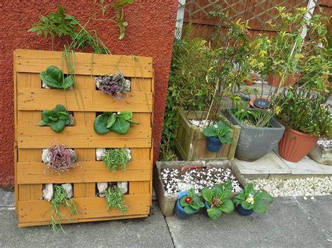 vertical succulent planter 25 inspiring diy pallet planter ideas