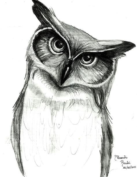 dibujos realistas buho dibujo de b 250 ho a l 225 piz dibujos pinterest dibujos