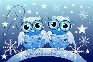Owls Home Decor quot cute blue owls merry christmas text card quot greeting cards