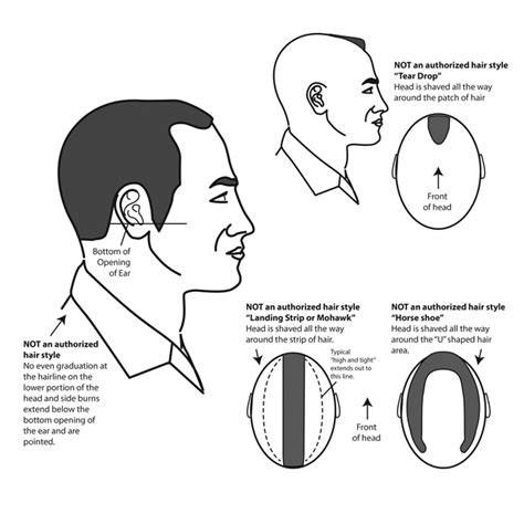 army male hair regulations 670 1 uniform regulations the cougar battalion
