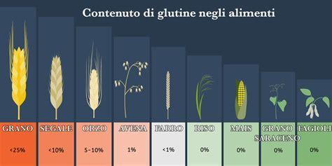 glutine negli alimenti cos 232 il glutine alcune cose importanti da sapere