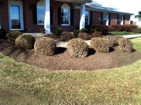 blue ridge landscaping projects