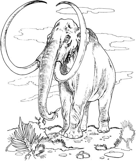detailed elephant coloring pages free coloring pages of detailed elephant