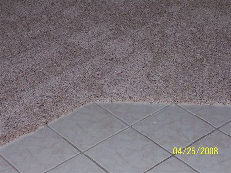 carpet to tile transition lowes transition from tile to carpet search flooring mudroom living rooms