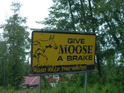 Powerstop Com Sweepstakes - moooooooooose need new brakes check out what we re giving away this week at http