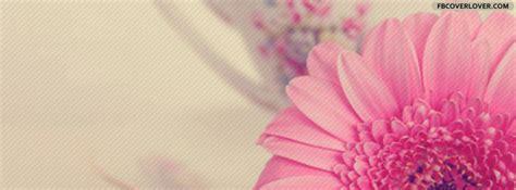 Beautiful Pink Flower Facebook Cover   fbCoverLover.com