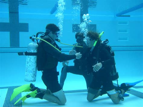 dive certifications pin scuba diving certification pictures on
