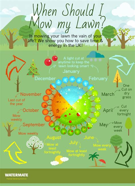 mow  lawn infographic mowing lawn care