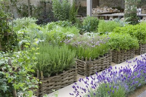 Kitchen Herb Garden Ideas things to do with willow wattle planters thinking