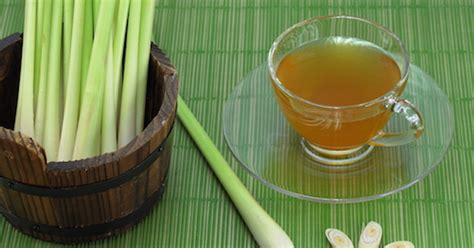 Lemongrass Detox Drink Recipe by How To Make Lemongrass Tea To Rid Yeast Infection