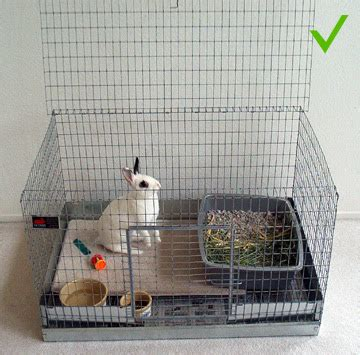 Alas Kandang Besi memelihara kelinci di rumah perlengkapan tempat yang