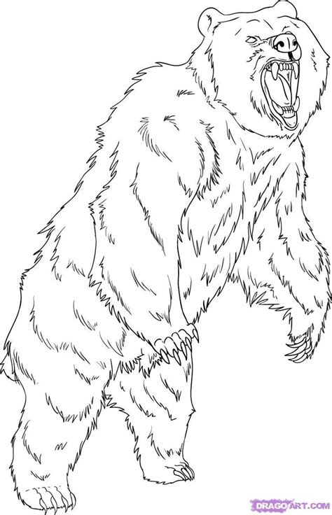 grizzly bear coloring pages how to draw a grizzly bear
