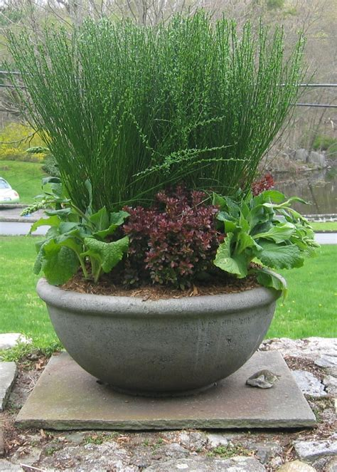 Perennial Planters by A Year In Garden May Sheri Silver Living A Well