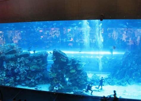 top  worlds  amazing gigantic aquariums