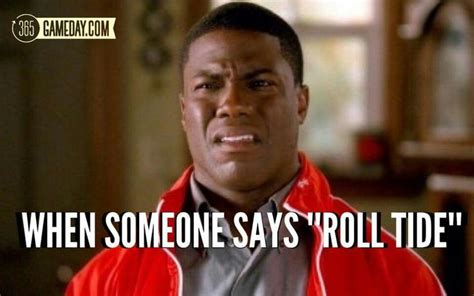 Clemson Football Memes - 341 best sports humor images on pinterest