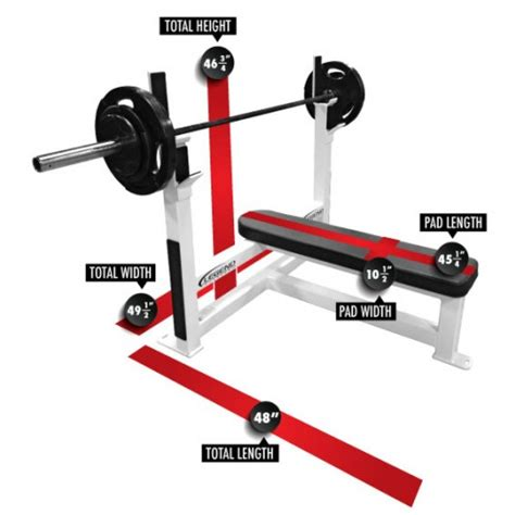 bench press routine for size bench press routine for size 28 images 25 b 228 sta
