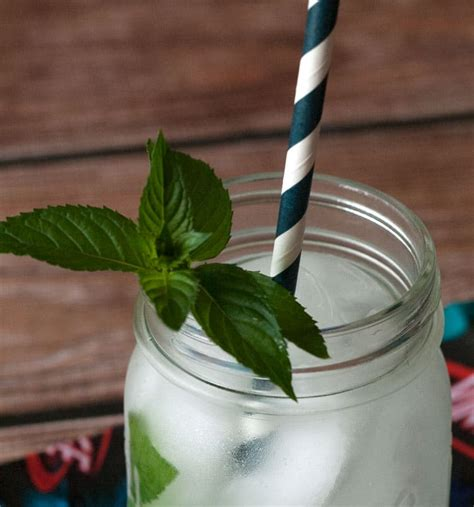 best mojito rum you ll definitely want to try the best rum mojito