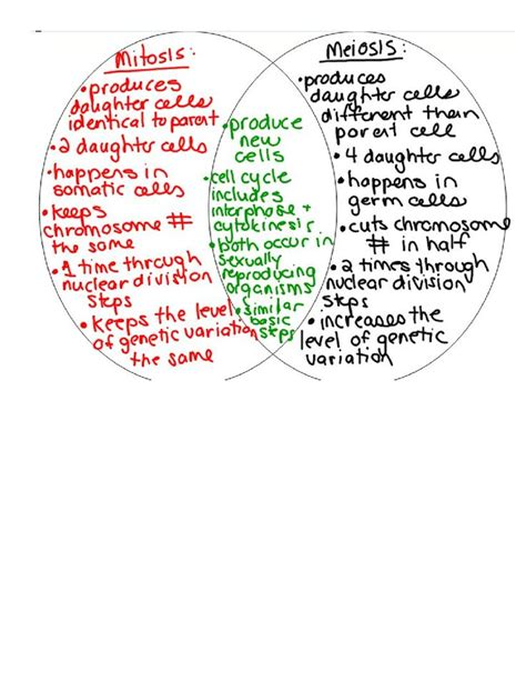 meiosis vs mitosis venn diagram 2 7 comparing and contrasting mitosis and meiosis doc betterlesson science