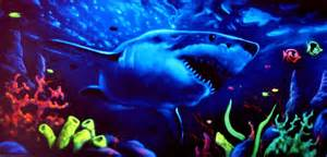blacklight murals flying colors murals black light wall art www imgkid com the image kid has it