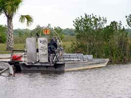 catalina airboats everglades tours sightseeing activities in florida