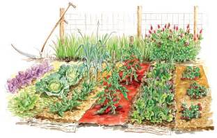 Best Vegetable Garden Layout How To Plan Vegetable Garden Layout Front Yard Landscaping Ideas